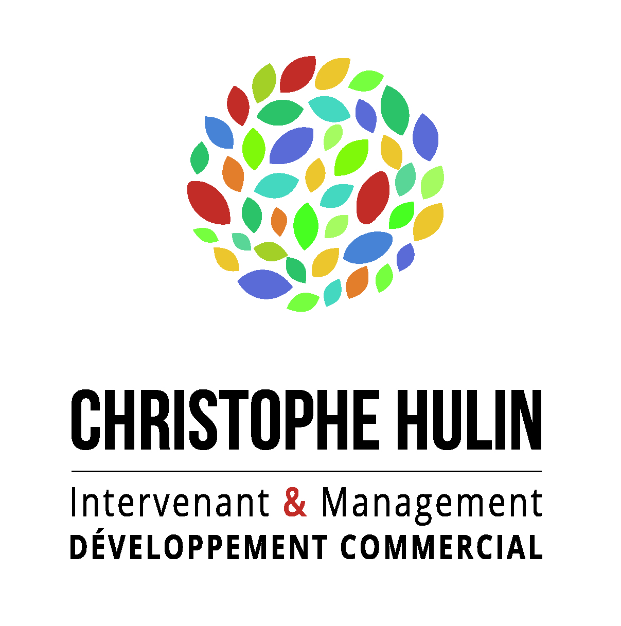 Christophe Hulin Coapi