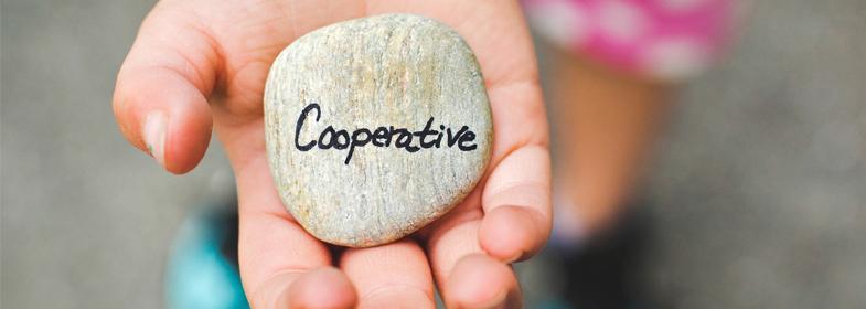 coapinfo coapi la rochelle dynamique cooperative